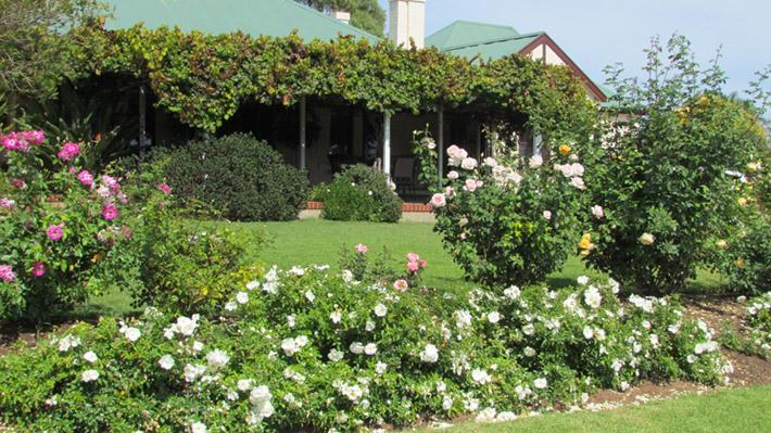 vintage_garden_710x400